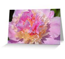 Magic Colours Greeting Card