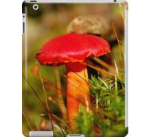 Red Cap & Orange Stalkings iPad Case/Skin