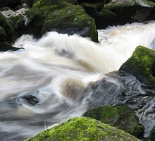 The Strid, Bolton Abbey by k8em