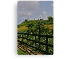 North Shore Windmills II Canvas Print