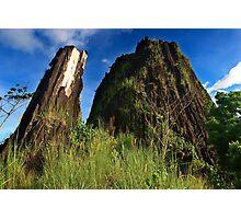 Pwisehn Malek (Chickensh*t Mountain) - Pohnpei, Micronesia Photographic Print