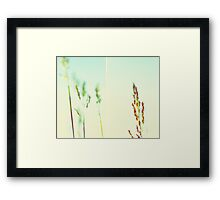 The tallest blade of grass is the first to be cut Framed Print