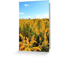 Fields of Gold II Greeting Card