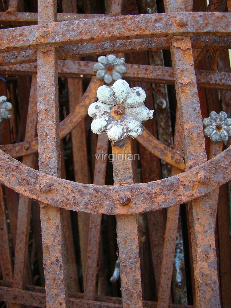Pretty Rust~ by virginian
