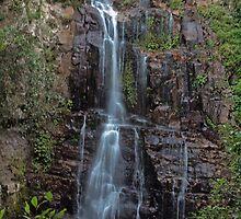 MINNAMURRA FALLS NSW by briangardphoto