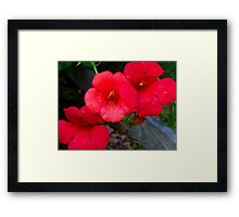 Trumpets of Fire Framed Print