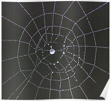 ~ Web Design ~ Poster