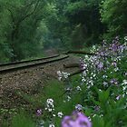 Mornig Along The Tracks Along The Allegheny River by Geno Rugh