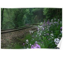 Mornig Along The Tracks Along The Allegheny River Poster