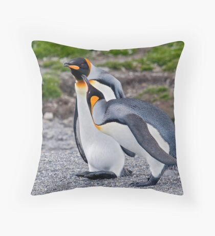Lemme give you a peck on the cheek! Throw Pillow