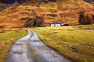 Road up to the cottage by FLYINGSCOTSMAN