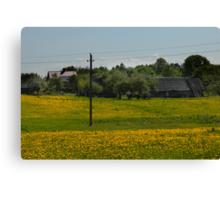 Spring in old farmstead (dandelion bloom) Canvas Print