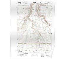 USGS Topo Map Oregon Steelhead Falls 20110808 TM Poster