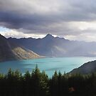 The Beauty of Aotearoa by Susie Peacock