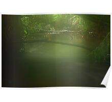 Misty Roger River in far nor west Tasmania , Australia Poster