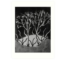 Trees in abstract contrast, watercolor Art Print