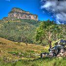 Mt Lindesay, Queensland, Australia by Adrian Paul
