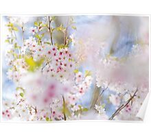 Glory of Spring Poster