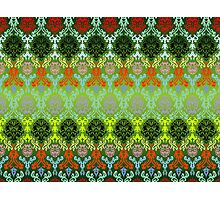 Colored seamless flowers pattern Photographic Print