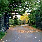 Gateway to.... by Meg Hart