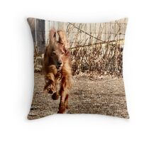 I think I can fly ... Throw Pillow