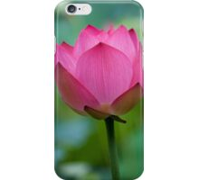 Purity Rose iPhone Case/Skin