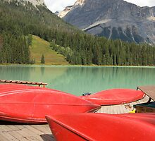 red canoes in canada by milena boeva
