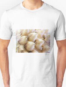 Globe Cornflower Seed Heads - Macro T-Shirt