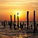 Sunrise Serenade by Michael Mill