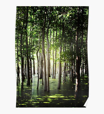 The Green Swamp Poster