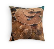 A swirl of table corals - Maldives Throw Pillow