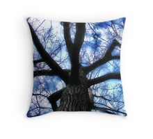 Fear of Heights Throw Pillow