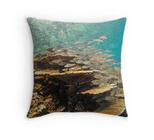 Stack of fish on table coral - Madives Throw Pillow