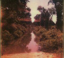 Dearth by Jill Auville
