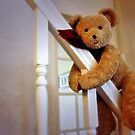 Big Ted by Astrid Ewing Photography