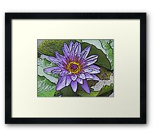 Sacred Blue Lotus Framed Print