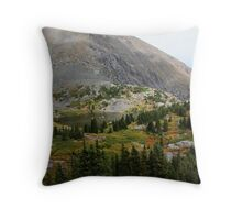Pocket Lake Throw Pillow