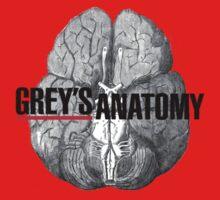 Grey's Anatomy Brain by KangarooZach41