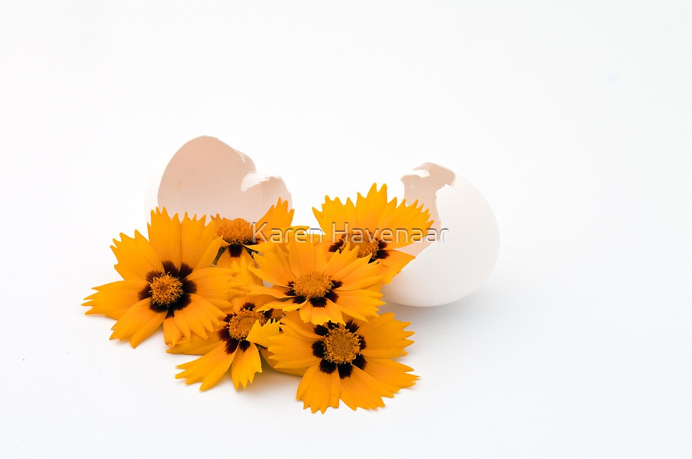How do you like your eggs in the morning? by Karen Havenaar