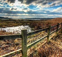 View across Poole Bay by Roy Griffiths