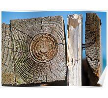 Wooden Textures Poster