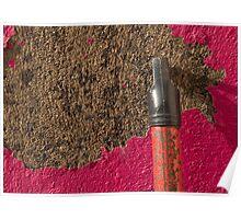 Peeling Pink & Red Poster