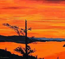 Orcas Island Sunset by Murray Pollard