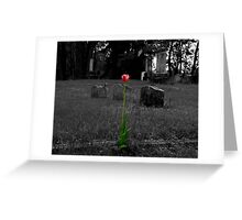 Grave Tulip Greeting Card