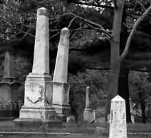 Leaning Tombstones by Jennifer  Causley