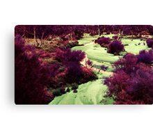 'Purple Valley' Canvas Print