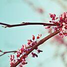 April by beverlylefevre