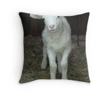 Newborn Lamb Throw Pillow