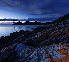 Rocky Cape Dawning by Robert Mullner