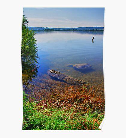 Lake Kochelsee Shore Poster